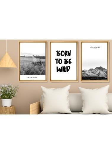Çerçeve Home  Born To Be Wild Natural Çerçeve Tablo Seti Renkli